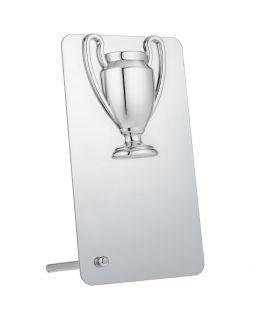 Награда Bowl Silver
